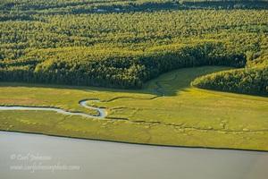 44712 O'Brien Creek Estuary (2)